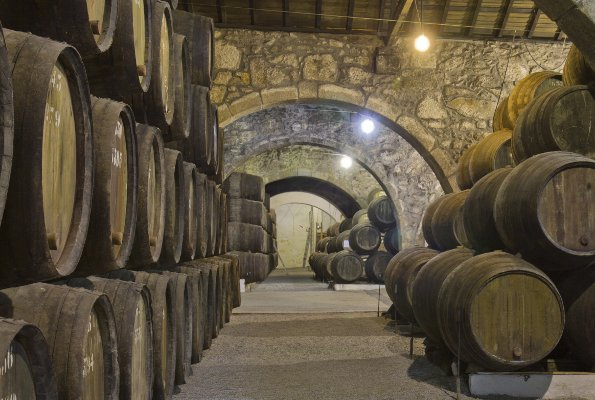 Wine tourism around the banks of the Douro